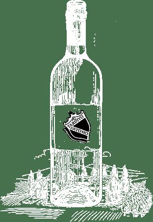 produzione e vendita vini Treviso, Pordenone, Venezia